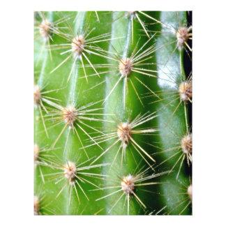 Primer de las espinas dorsales del cactus folleto 21,6 x 28 cm