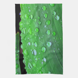 Primer de las gotas de agua, verde de Spacey Toallas