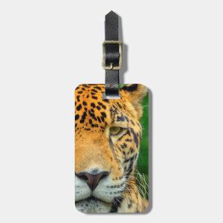 Primer de una cara del jaguar, Belice Etiquetas Para Maletas