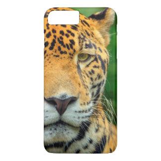 Primer de una cara del jaguar, Belice Funda iPhone 7 Plus