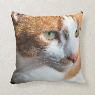 Primer del gato de Tabby Cojín Decorativo