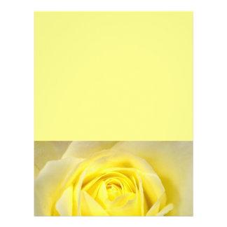 Primer del rosa amarillo folleto 21,6 x 28 cm