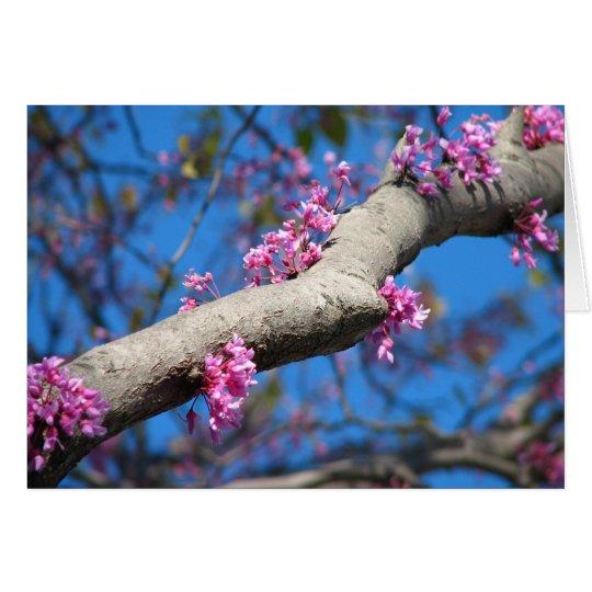 Primer día de primavera tarjeta de felicitación