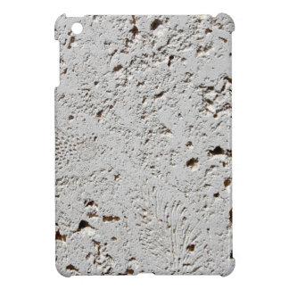 Primer fósil de la superficie de la teja del