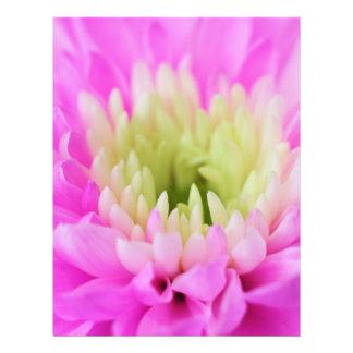 Primer rosado de la flor tarjetón