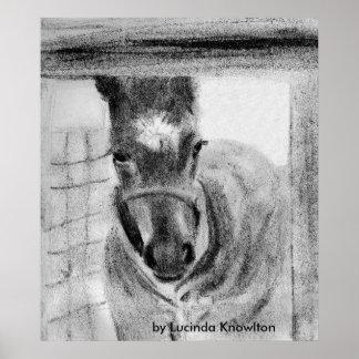 Primera vez hacia fuera, por Lucinda Knowlton Póster