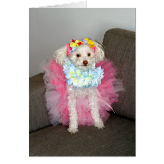 Princesa Chloe Tarjeta De Felicitación