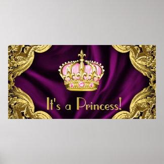 Princesa real fiesta de bienvenida al bebé póster