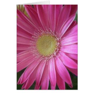 Princesa rosada de la margarita tarjeta pequeña