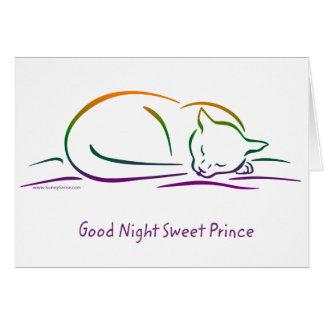 Príncipe dulce de las buenas noches gato