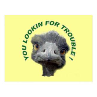 Problema de la avestruz postal
