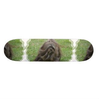 Producto del personalizar patín