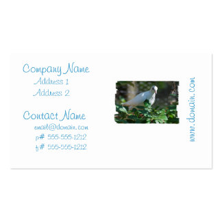 Producto del personalizar plantilla de tarjeta personal