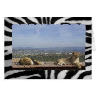 Producto perezoso del león tarjeta de felicitación