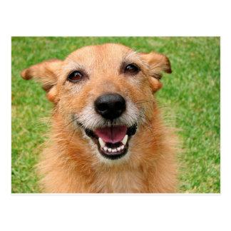 Productos felices del perro del fallecimiento gruñ postal