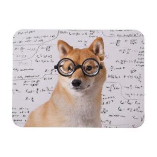 "Profesor Barkley 4"""" imán flexible de la foto x3"