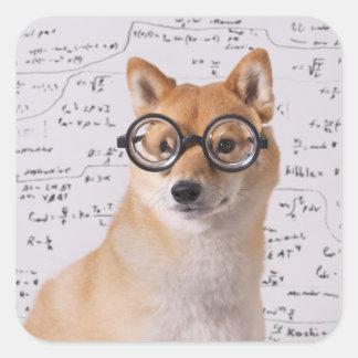 Profesor Barkley Square Sticker (brillante) Pegatina Cuadrada