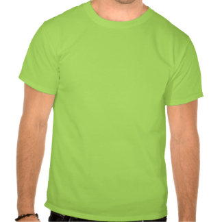 Profesor de matemáticas de la regla camiseta
