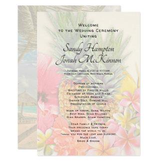 Programa corto de la ceremonia de las piñas de las