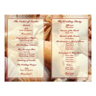Programa del boda de playa:  Seashell multicolor 2