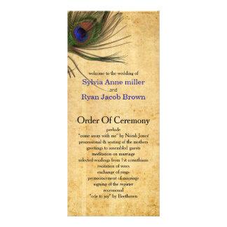 Programas rústicos del boda de la pluma del pavo