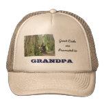 Promueven a los grandes papás a los gorras de los