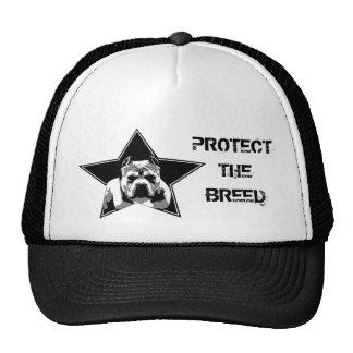 Proteja el gorra del pitbull de la raza -
