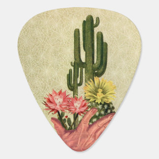 Púa De Guitarra Cactus del desierto manejados delicado