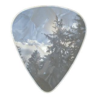 Púa de guitarra de la naturaleza