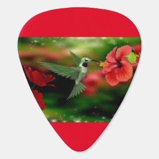 Púa de guitarra de los colibríes