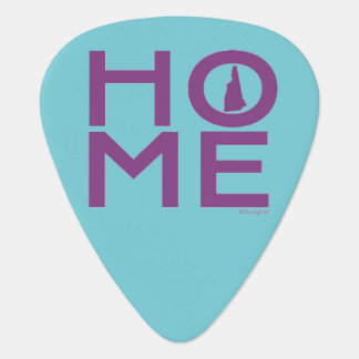 Púa de guitarra de New Hampshire