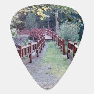 Púa De Guitarra Desconocido de la trayectoria