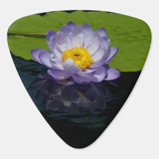 Púa de guitarra púrpura de Lotus Waterlily