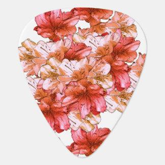 Púa De Guitarra Reserva floral del ejemplo de la flor del