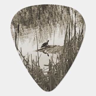 Púa De Guitarra Solsticio de invierno