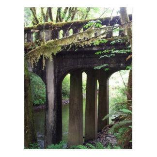 Puente cubierto de musgo sobre el río del solenoid postal