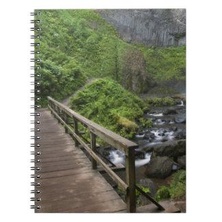 Puente en las caídas de Latourell, garganta del rí Libretas Espirales