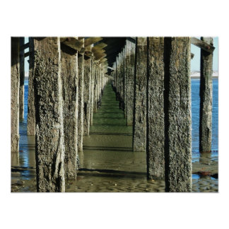 puente mA duxbury del powderpoint Póster
