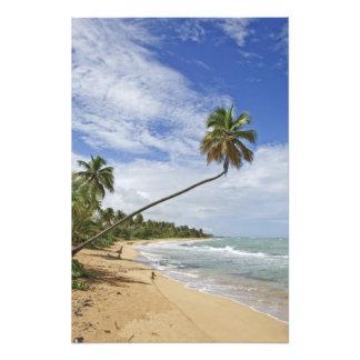 Puerto Rico. Playa Puerto Rico de Tres Palmitas Foto