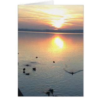 Puesta de sol con patos en el lago, postal, en tarjeta de felicitación