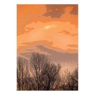 Puesta del sol con el ATC desnudo de los árboles Plantilla De Tarjeta De Visita
