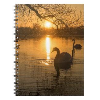 Puesta del sol con el cisne cuaderno