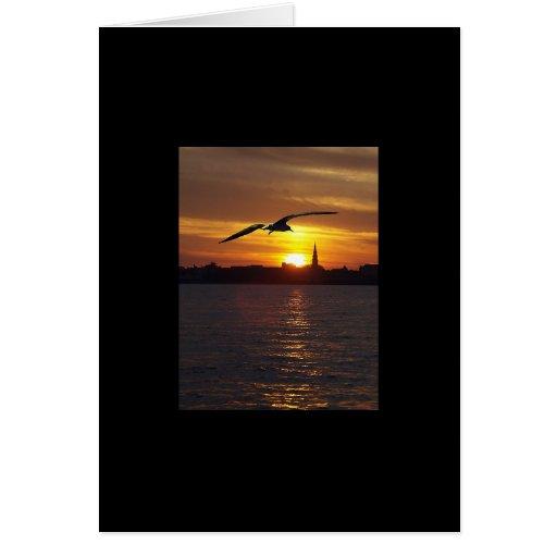 Puesta del sol de Charleston Tarjetas