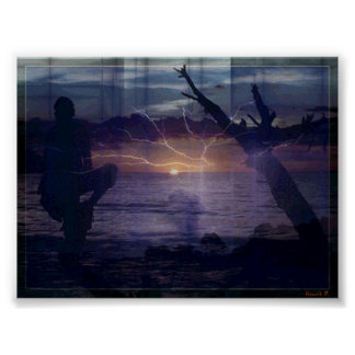 Puesta del sol de destello #1 impresiones