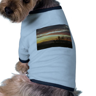Puesta del sol de las Islas del Canal Camiseta De Perro