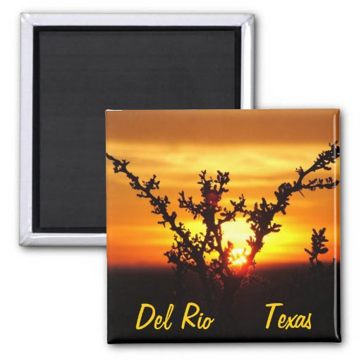 Puesta del sol del cepillo del desierto de los rec imán para frigorifico