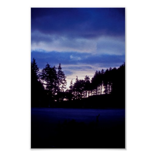 Puesta del sol del Kodiak en Long Island Posters