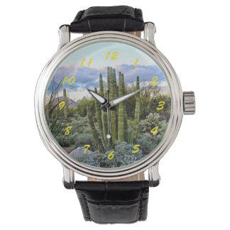 Puesta del sol del Succulent de Scottsdale Reloj