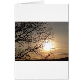 Puesta del sol hermosa con los branchs tarjeta de felicitación