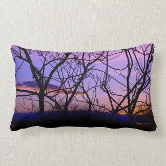 Puesta del sol púrpura y rosada a través de la cojín lumbar